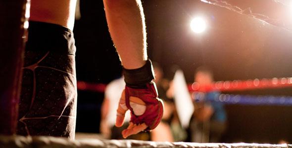 Wing Chun and Mixed Martial Arts